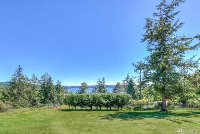 4074 Crow Valley Rd, Orcas Island, WA 98245 (#1496305) :: Ben Kinney Real Estate Team