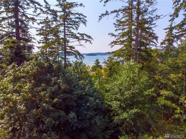 13444 Eagle Street, Anacortes, WA 98221 (#1496328) :: Real Estate Solutions Group