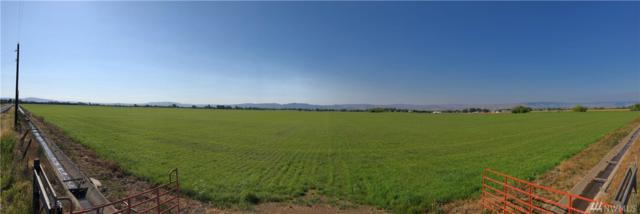 2750-XX Brick Mill Rd, Ellensburg, WA 98926 (#1496367) :: Center Point Realty LLC