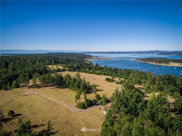123 Dragon Run Road, Lopez Island, WA 98261 (#1496834) :: Ben Kinney Real Estate Team