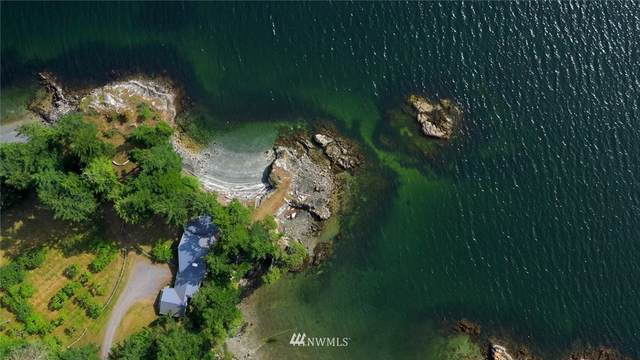 987 Hawkins Road, Orcas Island, WA 98245 (#1497873) :: M4 Real Estate Group