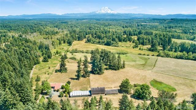 35403 8th Ave S, Roy, WA 98580 (#1498626) :: Real Estate Solutions Group