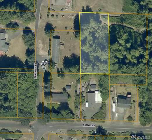 0 Blacktail Lane, Hoquiam, WA 98550 (#1499495) :: Ben Kinney Real Estate Team