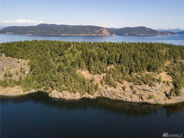 142 Red Cedar Rd, Lopez Island, WA 98261 (#1499866) :: Keller Williams Realty