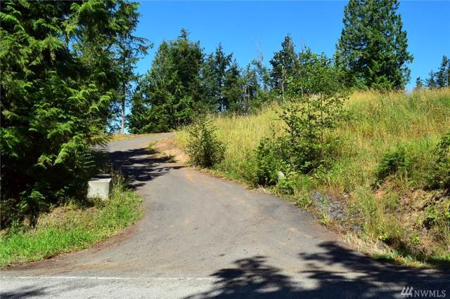 8366 N North Pass Rd, Everson, WA 98247 (#1500346) :: Commencement Bay Brokers