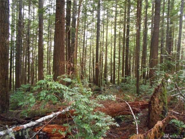 0 Pollock Dr, Brinnon, WA 98320 (#1500458) :: KW North Seattle