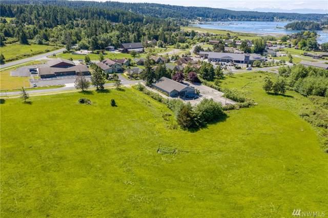 87 Weeks Rd, Lopez Island, WA 98261 (#1500462) :: Ben Kinney Real Estate Team