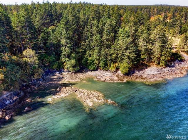 0 Simcox Rd, Lopez Island, WA 98261 (#1501307) :: Ben Kinney Real Estate Team