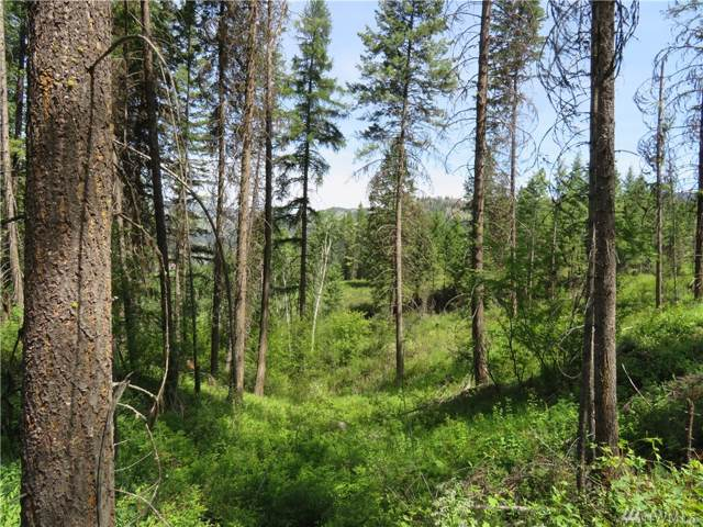 0-Lot 9 Boulder Creek Rd, Curlew, WA 99118 (#1501944) :: Keller Williams Realty