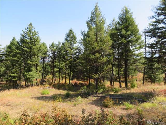 0-Lot 148 Union Ridge Rd, Republic, WA 99166 (#1502211) :: Keller Williams Realty