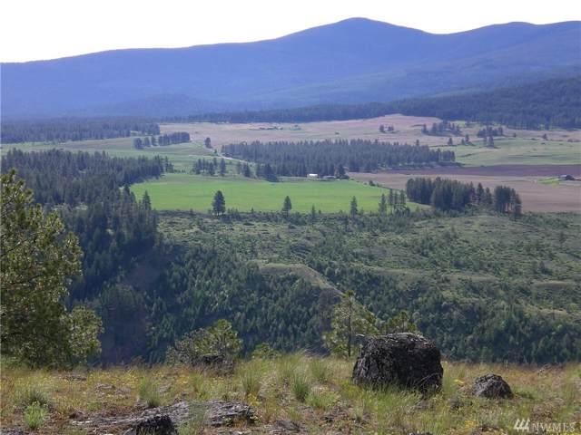 71 Wild Cat Rd, Tonasket, WA 98855 (#1503089) :: Keller Williams Western Realty