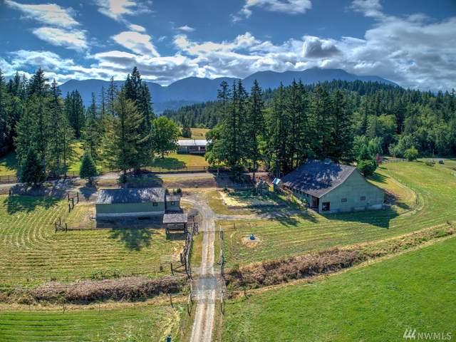 190 Mcinnes Rd, Quilcene, WA 98376 (#1503272) :: Mike & Sandi Nelson Real Estate