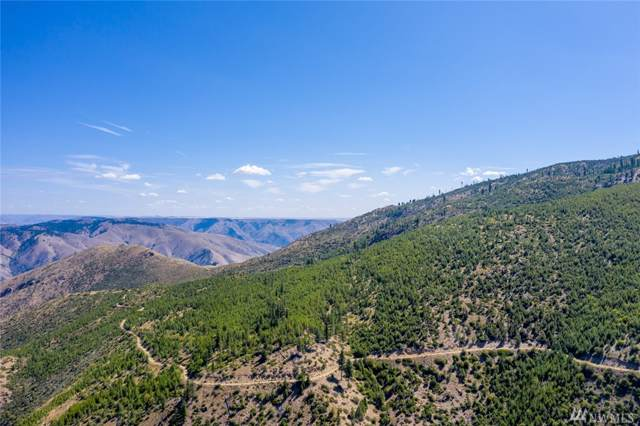 0-320 acre Mills Canyon Rd, Entiat, WA 98822 (MLS #1503538) :: Nick McLean Real Estate Group