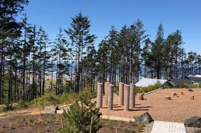 38 Hidden Cove Lp, Pacific Beach, WA 98571 (#1503779) :: Capstone Ventures Inc
