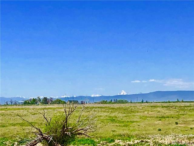 16841 Upper Badger Pocket Rd, Ellensburg, WA 98926 (#1505085) :: Ben Kinney Real Estate Team