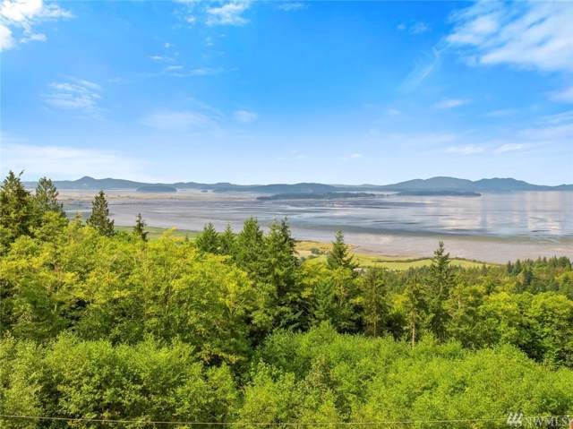 0 Mountain Dr, Bow, WA 98232 (#1506100) :: TRI STAR Team | RE/MAX NW