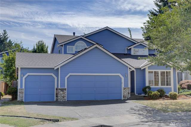 953 Graham Ave NE, Renton, WA 98059 (#1506169) :: Hauer Home Team