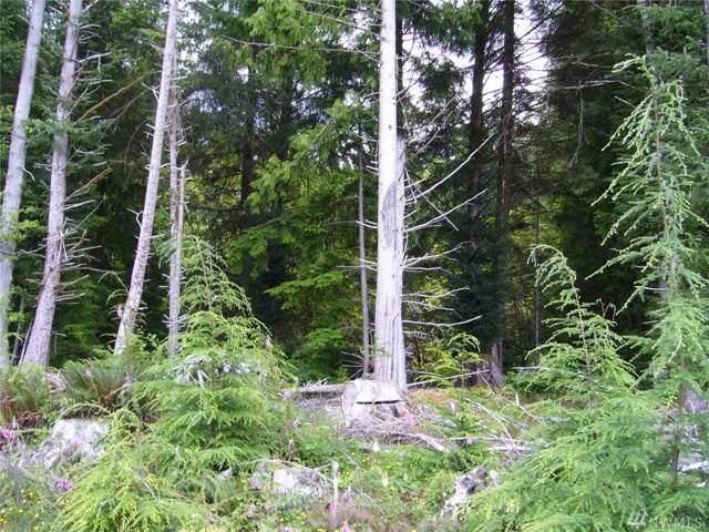 999 Cedar Creek, Forks, WA 98331 (#1506255) :: McAuley Homes