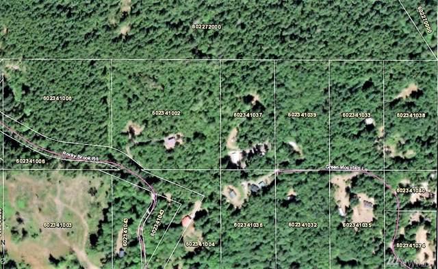 630 Green Mountain Lane, Brinnon, WA 98382 (#1506370) :: Keller Williams - Shook Home Group