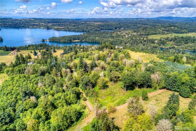 0 Skyview Dr, Mossyrock, WA 98564 (#1506528) :: Ben Kinney Real Estate Team