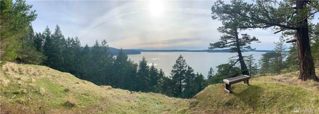 0 Thatcher Pass Rd, Blakely Island, WA 98222 (#1506581) :: Commencement Bay Brokers