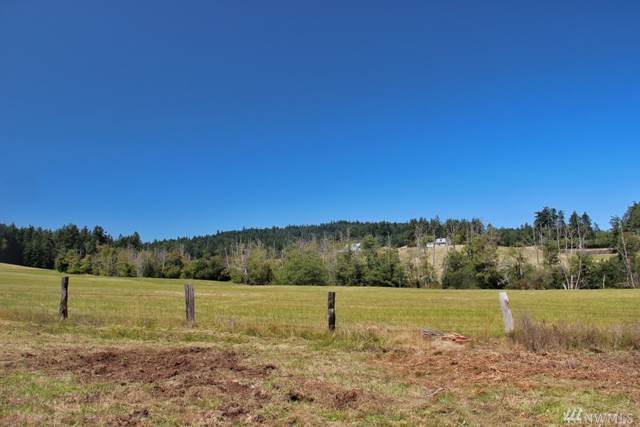 0 Prohaska Rd, San Juan Island, WA 98250 (#1506656) :: Commencement Bay Brokers