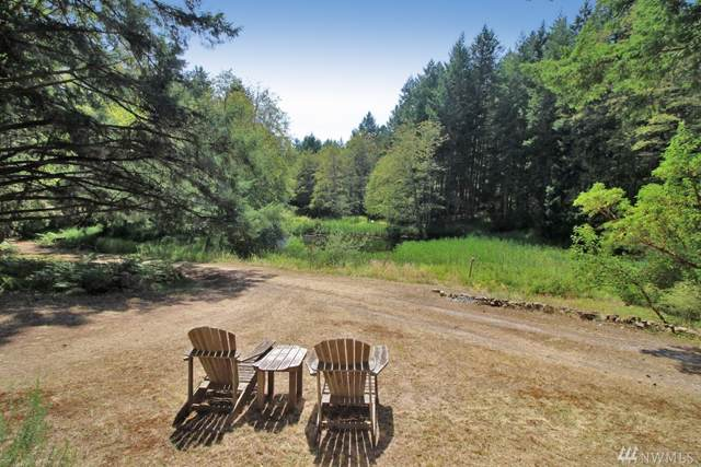 1057 Prohaska Rd, San Juan Island, WA 98250 (#1506863) :: Commencement Bay Brokers
