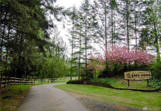 21400 E State Route 3 Hwy, Belfair, WA 98528 (#1507035) :: Ben Kinney Real Estate Team