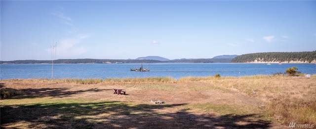 847 Peninsula Rd, Lopez Island, WA 98261 (#1507671) :: Ben Kinney Real Estate Team