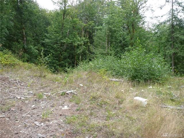 0 Welsch Lane, Brinnon, WA 98320 (#1507676) :: KW North Seattle