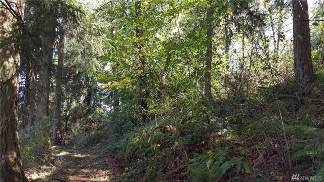398-XX 272nd Ave SE, Enumclaw, WA 98022 (#1507860) :: Keller Williams Realty Greater Seattle