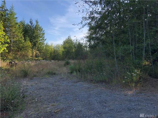 101 Balsa Wy, Port Townsend, WA 98368 (#1507898) :: Better Homes and Gardens Real Estate McKenzie Group