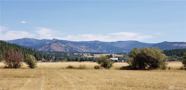 0 Lot F  Red Bridge R., Cle Elum, WA 98922 (#1507986) :: Record Real Estate