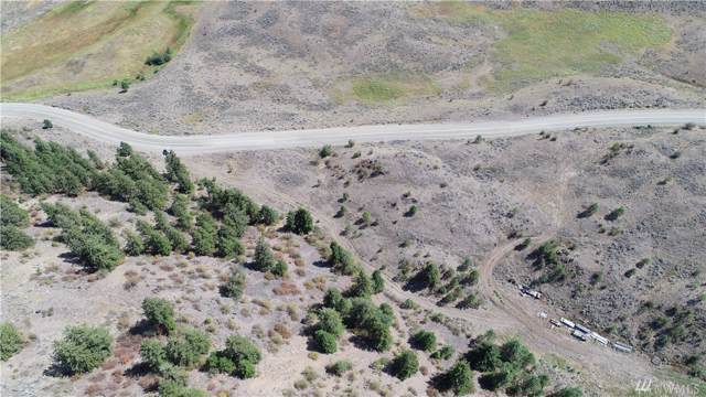 12 Tbd Wannacut Lake Rd, Oroville, WA 98844 (#1508109) :: Canterwood Real Estate Team