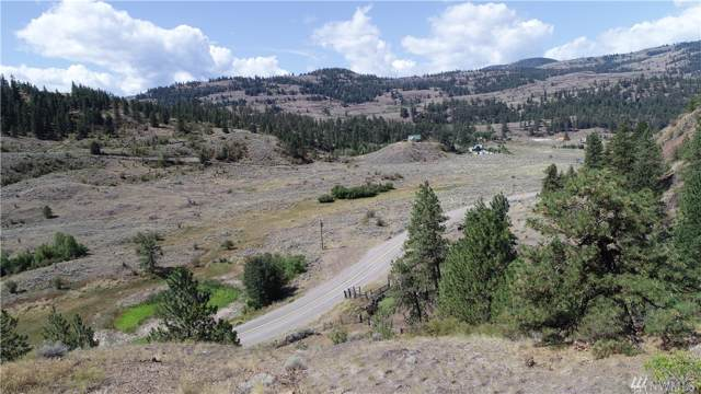 3 Tbd Wannacut Lake Rd, Oroville, WA 98844 (MLS #1508712) :: Nick McLean Real Estate Group