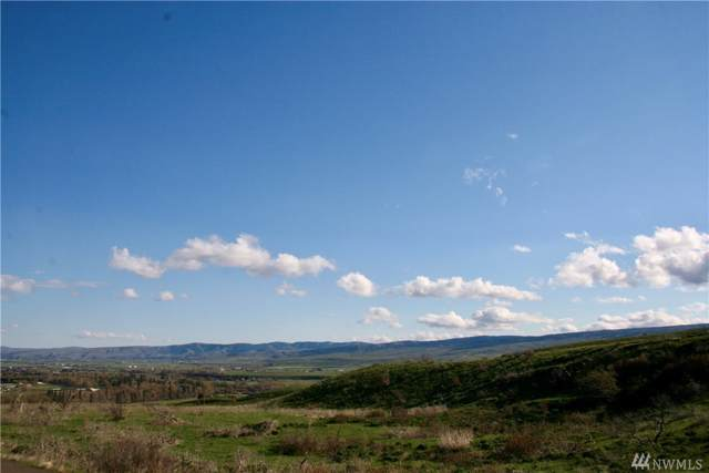 0 Deer Valley Lot 19 Dr, Ellensburg, WA 98926 (MLS #1509347) :: Nick McLean Real Estate Group