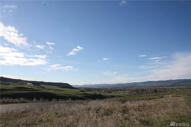 0 Deer Valley Lot 14 Dr, Ellensburg, WA 98926 (MLS #1509351) :: Nick McLean Real Estate Group