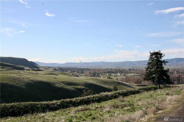 0 Deer Valley Lot 9 Dr, Ellensburg, WA 98926 (MLS #1509358) :: Nick McLean Real Estate Group