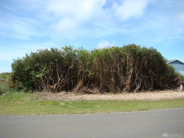 413 Ocean Shores Blvd NW, Ocean Shores, WA 98569 (#1509431) :: Northwest Home Team Realty, LLC