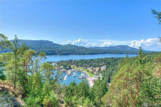 299 Geiser Wy, Orcas Island, WA 98245 (#1509496) :: Northern Key Team