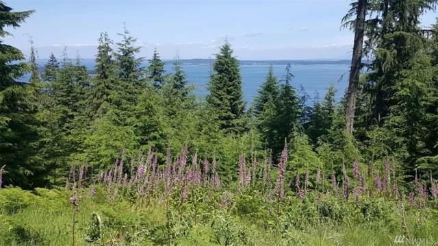 0 Raven Lane #38, Orcas Island, WA 98279 (#1510126) :: Northwest Home Team Realty, LLC
