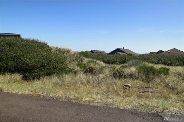 1260 Camero Lp, Ocean Shores, WA 98569 (#1510183) :: Northwest Home Team Realty, LLC