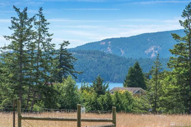 281 Olga Rd, Orcas Island, WA 98245 (#1510226) :: Real Estate Solutions Group
