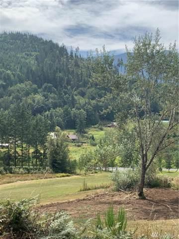 2314 Eden Valley, Port Angeles, WA 98363 (#1510547) :: Crutcher Dennis - My Puget Sound Homes