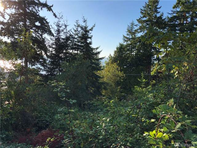 7 N Camano Dr, Camano Island, WA 98282 (#1510628) :: The Kendra Todd Group at Keller Williams