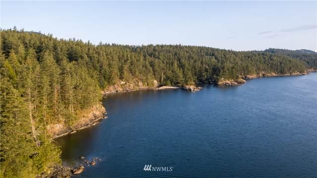 987 Hawkins Road, Orcas Island, WA 98425 (#1511412) :: M4 Real Estate Group