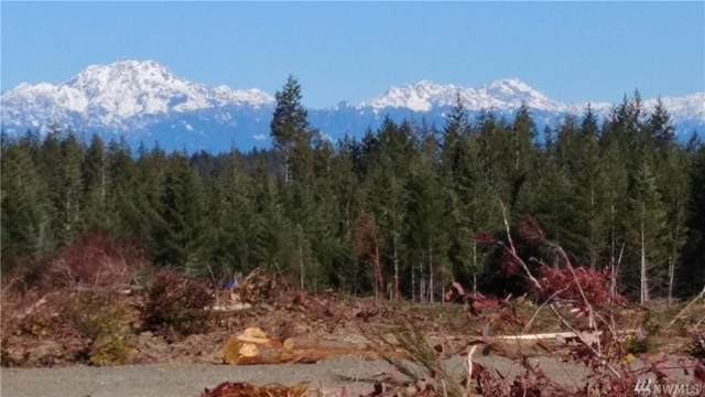 0-lot2 Benson Ridge Rd, Grapeview, WA 98546 (#1511576) :: Chris Cross Real Estate Group