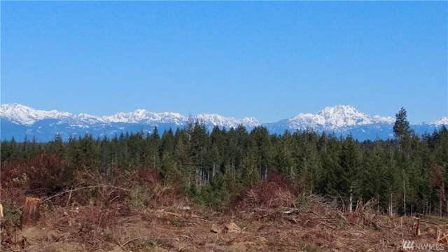0-lot3 Benson Ridge Rd, Grapeview, WA 98546 (#1511591) :: Chris Cross Real Estate Group