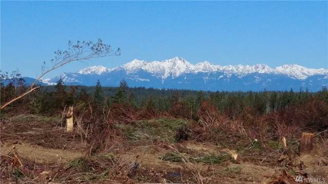 0-lot4 Benson Ridge Rd, Grapeview, WA 98546 (#1511618) :: Chris Cross Real Estate Group