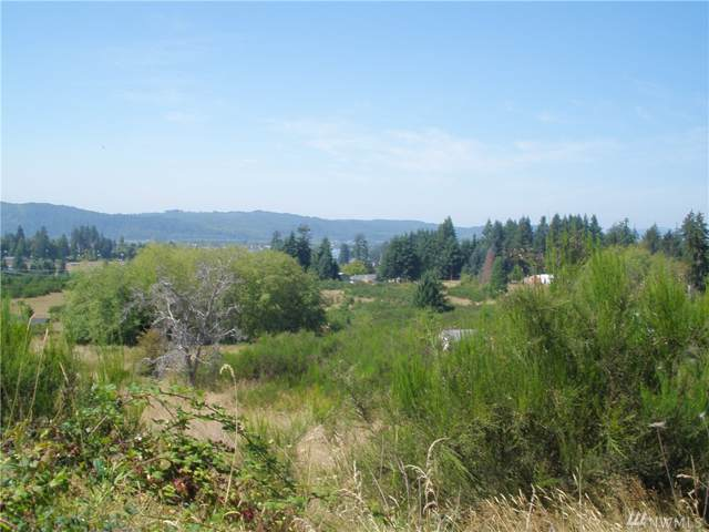 15 Orchard Dr, Cathlamet, WA 98612 (#1511619) :: Lucas Pinto Real Estate Group